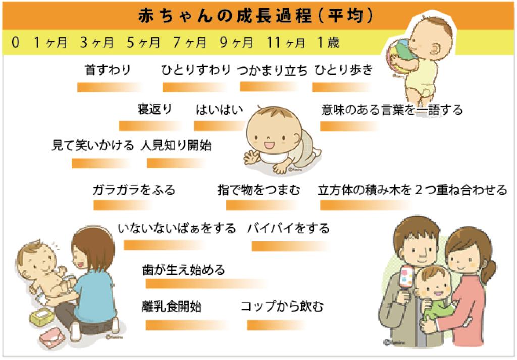 赤ちゃんの成長過程