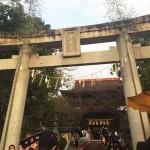 香椎宮に初詣♪最近のおみくじは景品付!